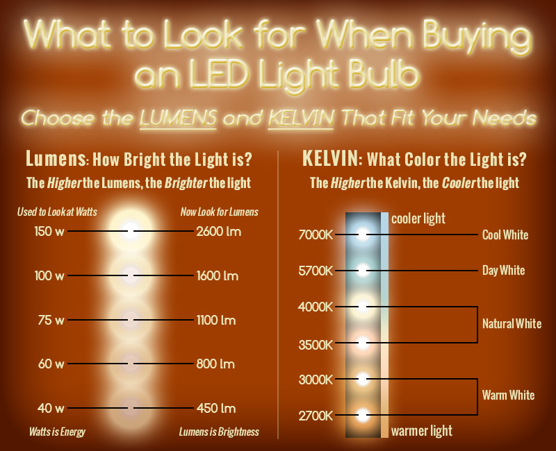 Led 101 a guide to led temperature lumens and watts for Led bulb buying guide